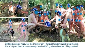 October 2014 Goat Races