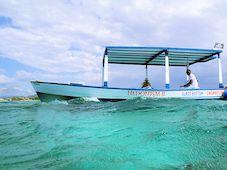 Glass Bottom Snorkeling
