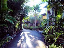 Walking Through the Resort